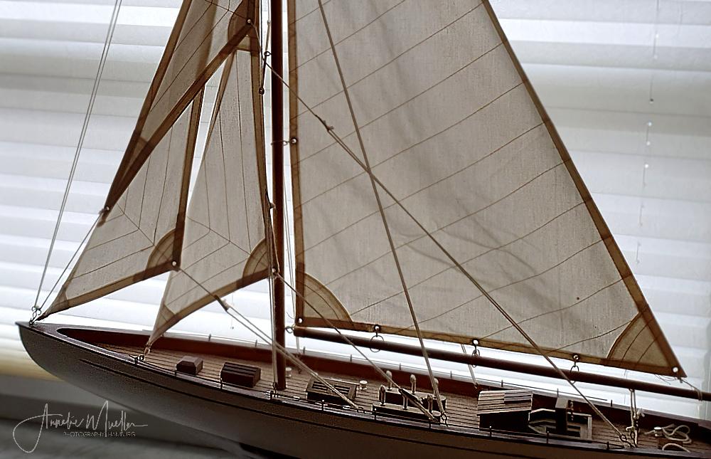 Maritimer Mittwoch  12/2020